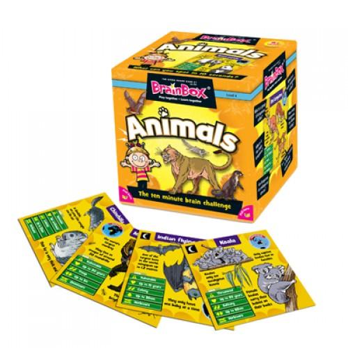 brainbox animals inglés divertido