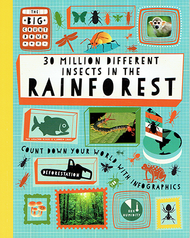 30 million different insects in the rainforest inglés divertido