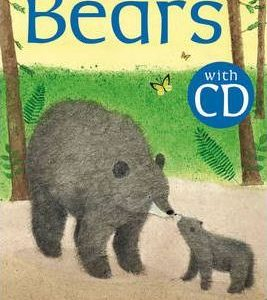 bears-ingles-divertido