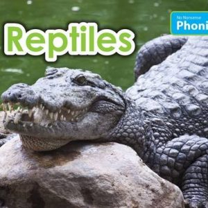 reptiles-ingles-divertido