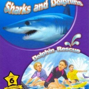 sharks-and-dolphins-ingles-divertido