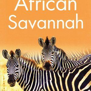 african-savannah-level-2-ingles-divertido