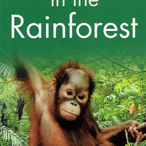 in-the-rainforest-level-2-ingles-divertido