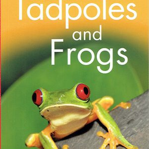 tadpoles-and-frogs-level-1-ingles-divertido