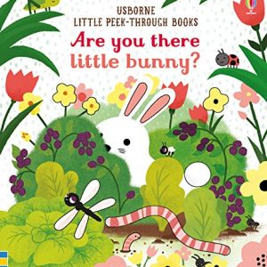 are-you-there-little-bunny-ingles-divertido