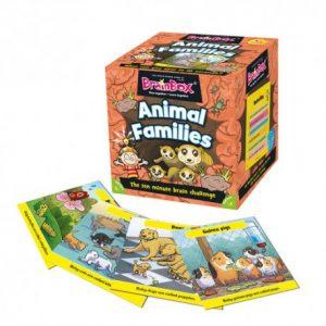 brainbox-animal-families-ingles-divertido