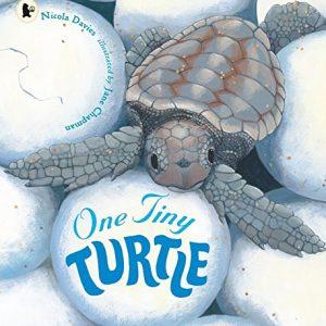one-tiny-turtle-ingles-divertido