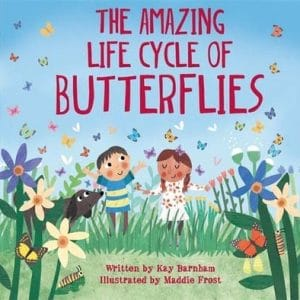 the-amazing-life-cycle-of butterflies-ingles-divertido