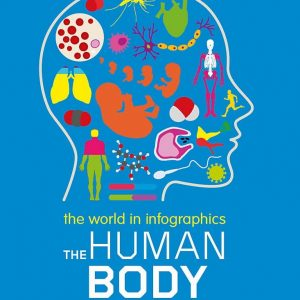 the-human-body-ingles-divertido